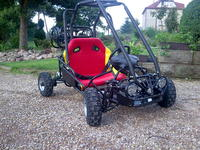 buggy110S